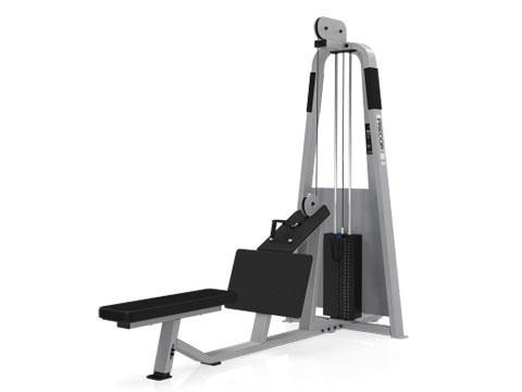 Precor Icarian Low Pulley Row