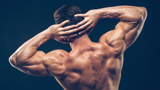 Arnolds shoulder press -Build-Strong-Back-and-Shoulder-Muscles-PSLT